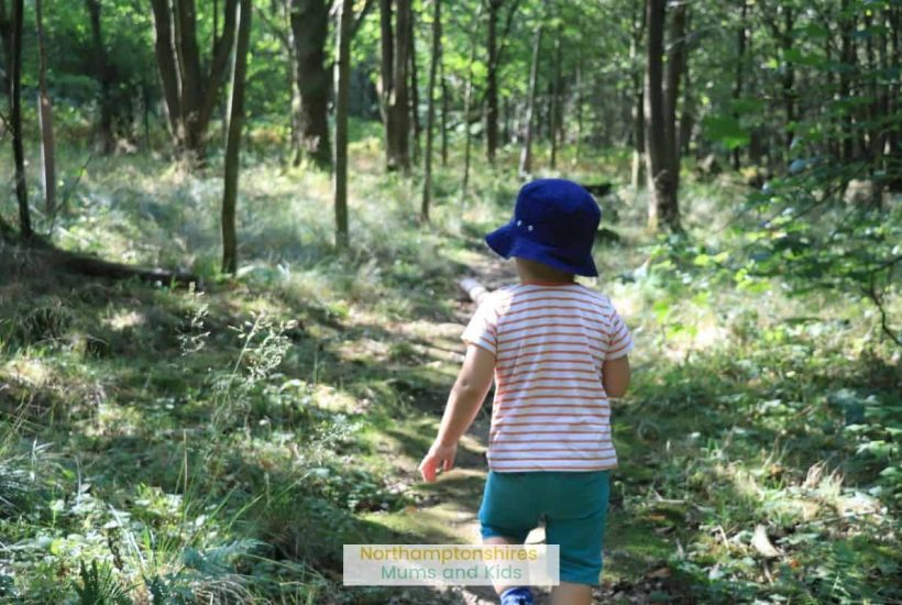 Badby Wood is a great spot for a walk on a nice day. Walk under the remains of an old gatehouse and enjoy the quiet amongst the trees. For more ideas of places to go in Northamptonshire check out www.northamptonshiremumsandkids.co.uk
