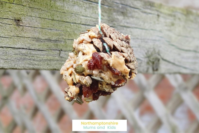 A quick and easy craft for your child to make a pine cone bird feeder. This can be done in under half an hour.