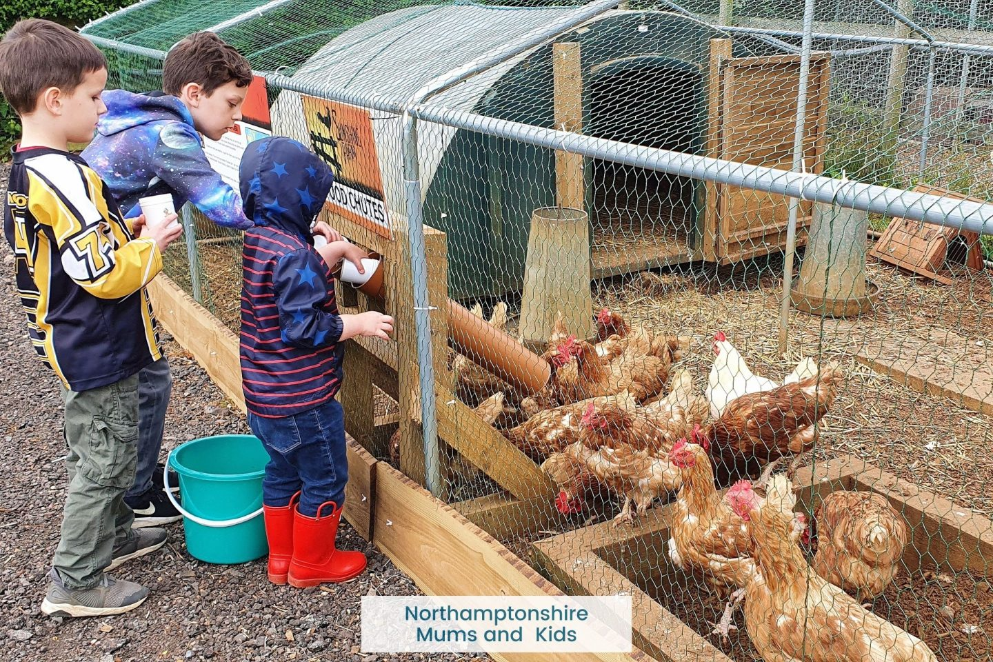 The Sunshine Farm Brixworth is a great half-day out. With animals to feed, a cafe and a play area there is enough to keep the kids happy.